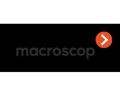 Лицензия на работу с 1 IP-камерой MACROSCOP ST (х86)